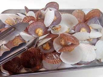 めかぶと稚貝の潮汁の稚貝を取り出す