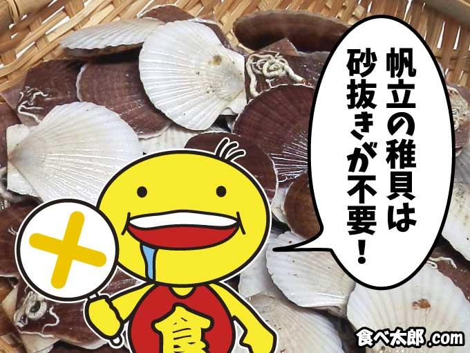 帆立稚貝は砂抜き不要
