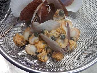 茹でた帆立稚貝は身が取れる
