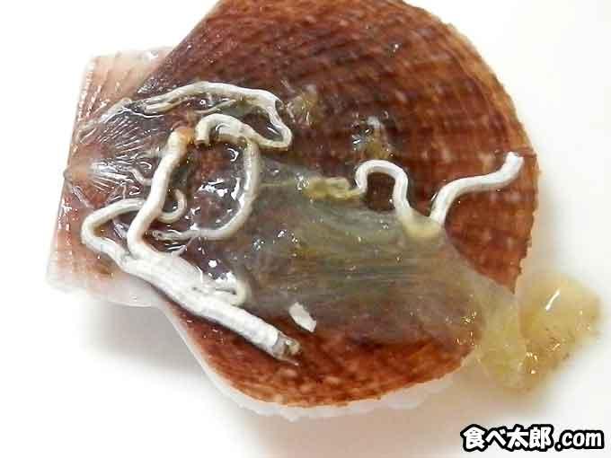 稚貝に付くデロデロした透明の物体