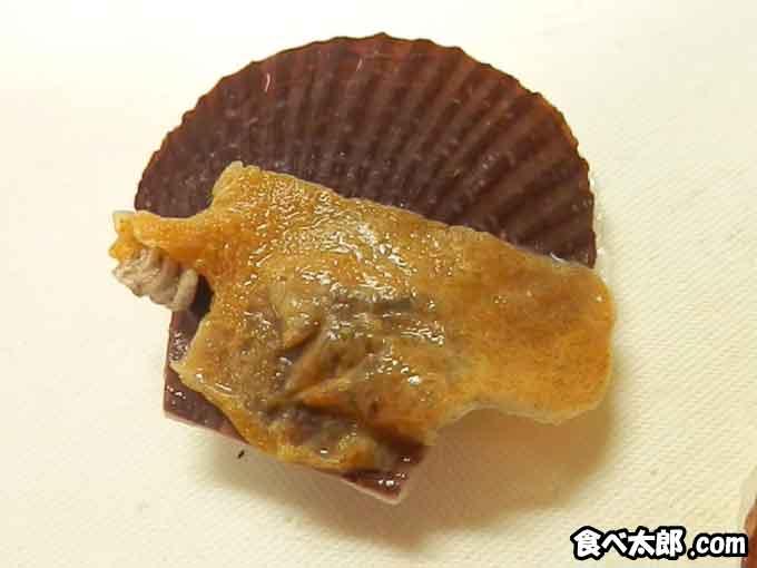 稚貝に付着するコケムシ?