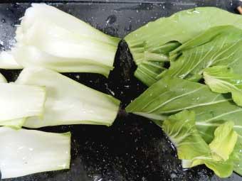 帆立稚貝(ベビーホタテ)八宝菜に使うチンゲン菜