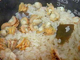 炊きあがった帆立稚貝ご飯