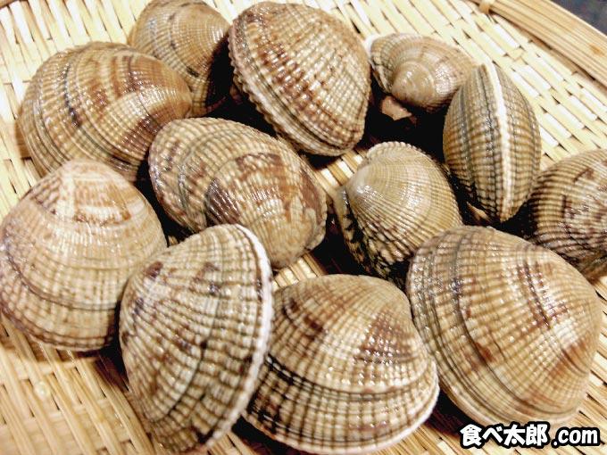 カリカリ小梅に使うアサリ(貝殻)