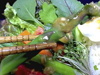カオマンガイのタレで食べる野菜