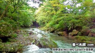 埼玉県飯能市の吾野渓谷ナイスバーベーキューガーデンの脇にある高麗川