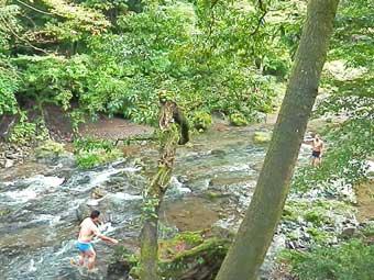 吾野渓谷ナイスバーベーキューガーデンで川遊びする客