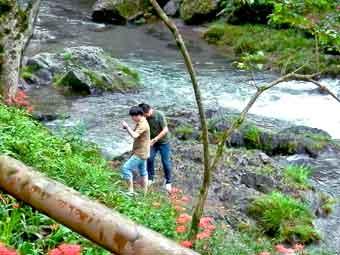 テントエリアの階段を降りた高麗川の川べり