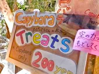 カピバラさんのおやつ200円@アウルの森