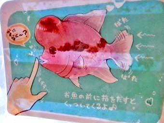熱帯魚と遊ぶ@アウルの森浅草公会堂前店