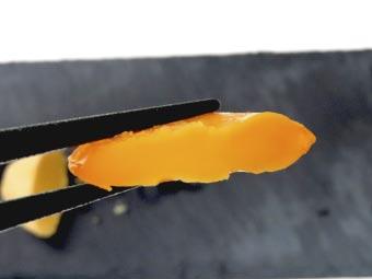 ボイルした卵黄味噌漬けの断面