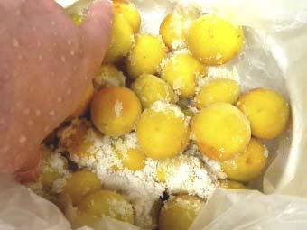 梅に塩と砂糖をまぶす