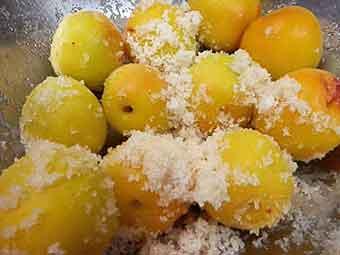 梅を小分けして塩と砂糖をまぶす