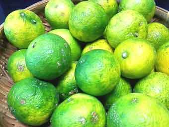 柚子胡椒に使う柚子